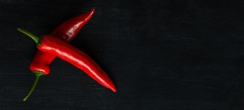 Red hot pepper on a dark background. A wide image with a place under the text Royalty Free Stock Photo
