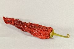 Red hot pepper, dried for storage stock photo