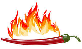 Red hot pepper with flames. Vector illustration of red hot pepper with flames Royalty Free Stock Image