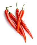 Red hot pepper isolated on white background Royalty Free Stock Photography