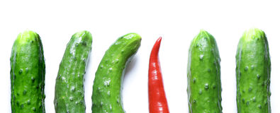 Red hot pepper one standing out from the crowd Royalty Free Stock Images
