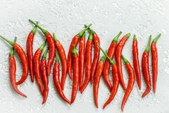 Red hot pepper pods close-up on a light background . Top view. Selective focus stock photos