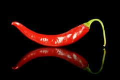 Red hot pepper Stock Image
