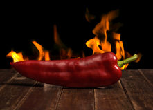 Red Hot Pepper Stock Photography
