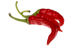 Red, hot peppers. On the white Stock Images