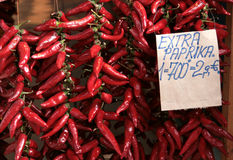 Red hot peppers Stock Images