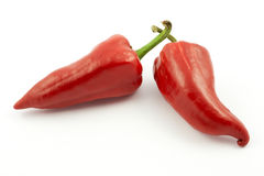 Red hot peppers Royalty Free Stock Photo