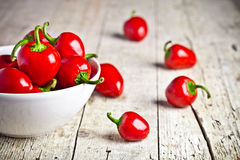 Red hot peppers in bowl Stock Images