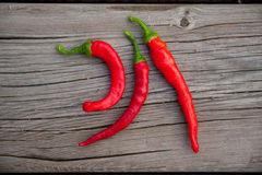 Red Hot Peppers royalty free stock photos
