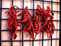 Red Hot Peppers on display. Red Hot Peppers hanging on display in bonches very much used in various cooking recepies photo shows the originality of this natural Royalty Free Stock Photo