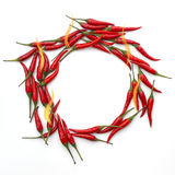 Red hot peppers with flames in a circle on white background Stock Image