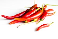 Red hot peppers fresh on the kitchen table. White background. Royalty Free Stock Image