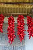 Red hot peppers hanging on the wall. Stock Photo