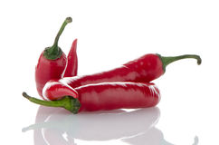 Red hot peppers Stock Image