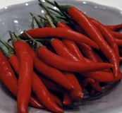 red hot peppers still life food ingredient vegetable stock photo