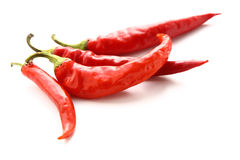 Red hot peppers on white background Stock Photography
