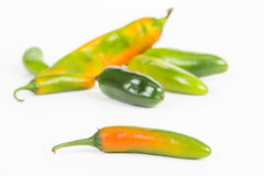 Red Hot Serrano Chile Pepper Stock Images