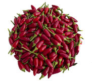 Red Hot Small Chili Peppers Royalty Free Stock Image
