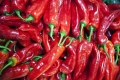 Red hot spicy organic hungarian peppers Stock Photo