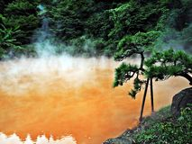 Red Hot Spring Stock Image