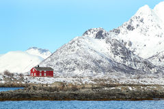 Red house near Trollfjord Royalty Free Stock Photo