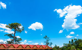 Red house roof with tree and blue sky Royalty Free Stock Photography