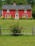 Red house rose bush close. Red wooden house with rose bushes along wooden fence close up Stock Photo