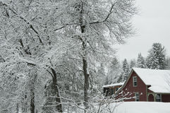The red house in the snow Royalty Free Stock Images