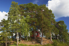 Red house in sweden Royalty Free Stock Image