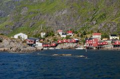Red houses fisherman's village Lofoten Island Norway Stock Image
