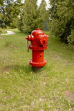 Red Hydrant. Red Fire Hydrant with green grass and bush backdrop Royalty Free Stock Images
