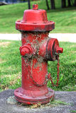 Red Hydrant Royalty Free Stock Photography