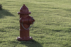 Red hydrant Stock Images