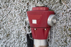 Red hydrant in hoarfrost Royalty Free Stock Photos