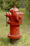 Red Hydrant II. Close view of red fire hydrant framed in green grass and shrubs in background Stock Photo