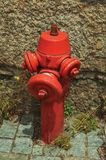Red hydrant on a paved alley. Close-up of red hydrant next to stone wall on a setts pavement at Seia. On foothill mountains, this friendly town in eastern stock images