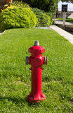 Red Hydrant in a Public Park Stock Image