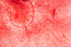 Red ice background Royalty Free Stock Photography
