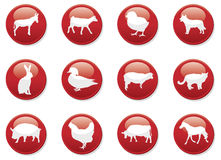 Red icon buttons animals Stock Image