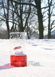 Red, icy drink in snow Stock Image