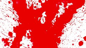 Red ink paint splatter on white background. Abstract footage stock illustration