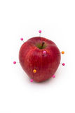 Red isolated apple with pins Royalty Free Stock Image