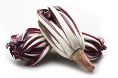 Red italian radicchio chicory. From Treviso close up Stock Image