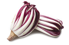 Red italian radicchio chicory. From Treviso close up Royalty Free Stock Photography