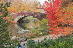 Red Ivy on Central Park Bridge Royalty Free Stock Photos