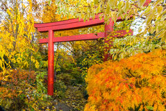 Red japan gate- autumn garden Royalty Free Stock Photography
