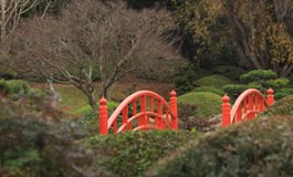 Red Japanese bridge in garden Royalty Free Stock Photos