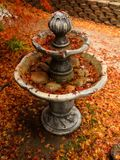 Red Japanese Maple tree leaves falling on an outdoor water fountain. stock photo