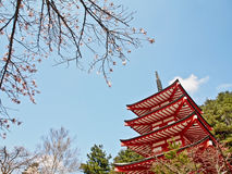 Red Japanese pagoda with blue sky Royalty Free Stock Photo