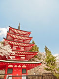 Red Japanese pagoda with sakura blossom 2 Royalty Free Stock Photography